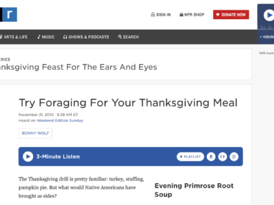 Try Foraging for your Thanksgiving Meal