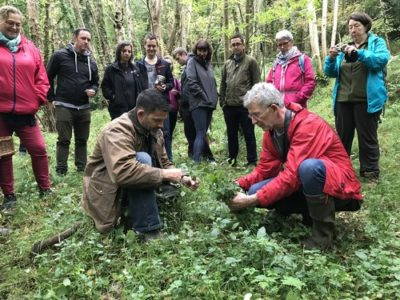 Foraging with Kevin Thornton