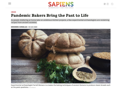 SAPIENS Article screenshot