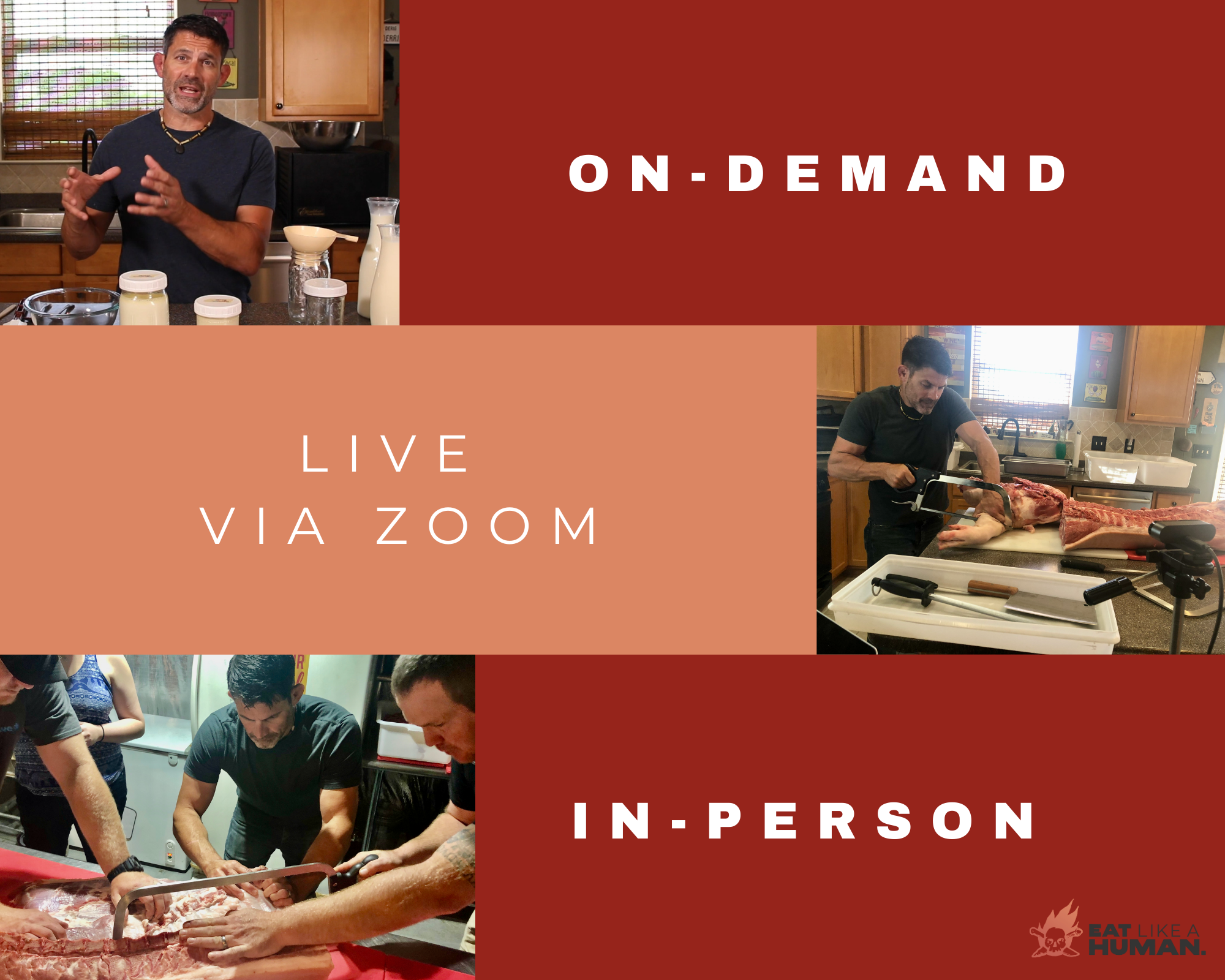 3 types of classes in on-demand, live via zoom and in person