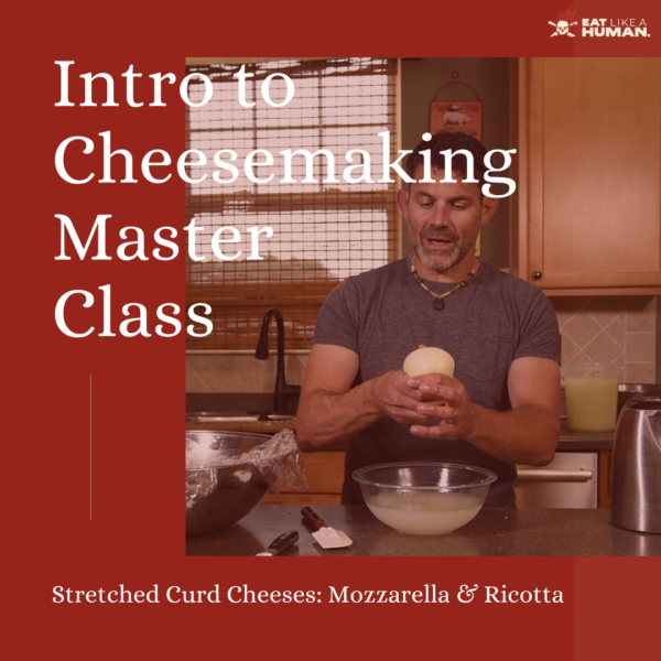 Intro to Cheesemaking Master Class Cover