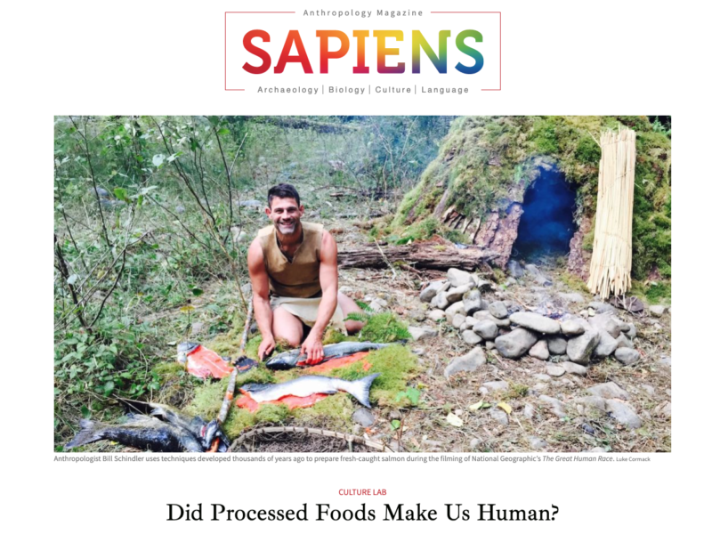 Sapiens Article Cover