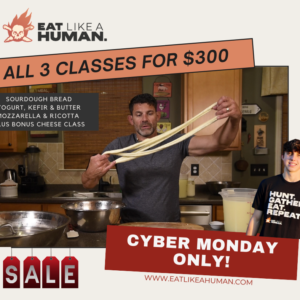 Cyber Monday Special Graphic