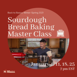 Back to Basics Sourdough Bread Cover
