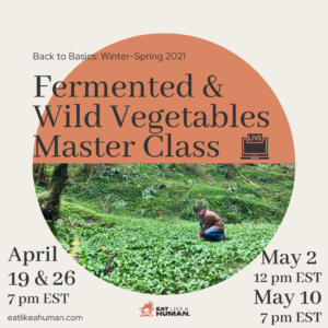 Back-to-Basics Fermented & Wild Veg Virtual Master Class Cover
