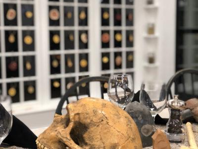 Skull on table